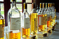 "A selection of different sauternes wines at a Union des Grand Crus tasting at the ""primeurs"" release in Bordeaux. Lineup of bottles with golden amber yellow colour and corks on a white table, backlight backlit back light lit. Tasting held at Domaine de Chevalier in Graves, Pessac-Leognan. Bordeaux Gironde Aquitaine France Europe"