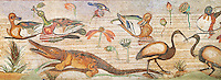 Nile Scene Roman Mosaic ( Scena Nileotica )  from Pompei Archaeological Site. Naples Archaeological Museum inv 9990