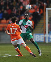 Plymouth Argyle's Freddie Ladapo under pressure from Blackpool's Matthew Virtue<br /> <br /> Photographer Kevin Barnes/CameraSport<br /> <br /> The EFL Sky Bet League One - Blackpool v Plymouth Argyle - Saturday 30th March 2019 - Bloomfield Road - Blackpool<br /> <br /> World Copyright © 2019 CameraSport. All rights reserved. 43 Linden Ave. Countesthorpe. Leicester. England. LE8 5PG - Tel: +44 (0) 116 277 4147 - admin@camerasport.com - www.camerasport.com