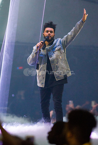 MIAMI, FL – OCTOBER 24: The Weeknd performs during the Starboy World Tour at the American Airlines Arena in Miami. October 24, 2017. Credit: mpi140/MediaPunch