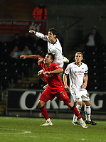 Pictured:<br /> Re: Carling Cup Round Four, Swansea City Football Club v Watford at the Liberty Stadium, Swansea, south Wales, Tuesday 11 November 2008.<br /> Picture by Dimitrios Legakis Photography (Athena Picture Agency), Swansea, 07815441513