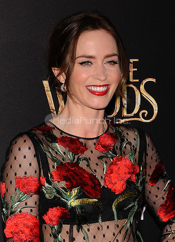 New York,NY-December 8: Emily Blunt  Attends the 'Into The Woods' world premiere at the Ziegfeld Theater on December 8, 2014. Credit: John Palmer/MediaPunch