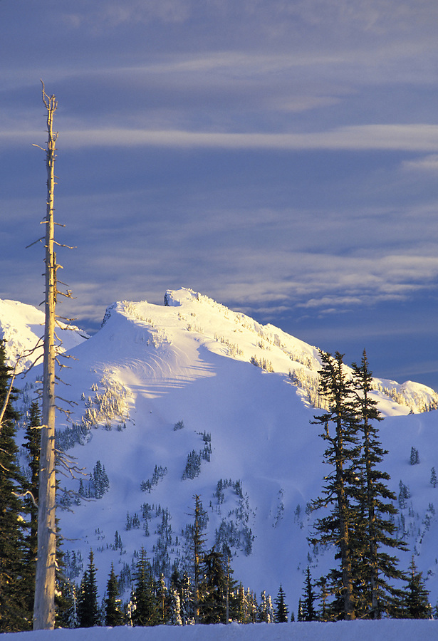 Tatoosh Range, Mount Rainier National Park, Washington