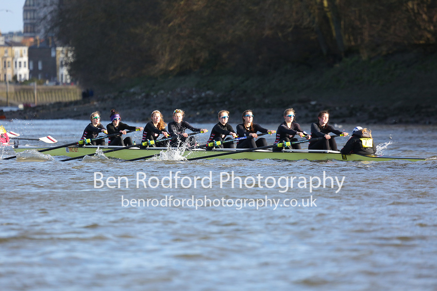 Crew: 70   Thames (Rogerson)   W Champ<br /> <br /> Quintin Head 2019<br /> <br /> To purchase this photo, or to see pricing information for Prints and Downloads, click the blue 'Add to Cart' button at the top-right of the page.