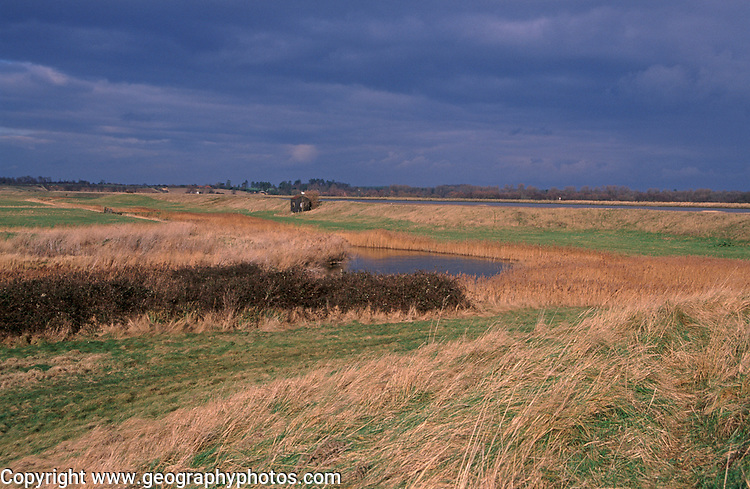 A912G0 River wall dyke drainage ditches and reed beds Butley Creek marshes, Suffolk, England- near Burrow Hill