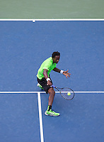 Gael Monfils Back Hand Volley