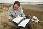 Snowy Plover (Charadrius nivosus) biologist, Ben Pearl, filling out data sheet, Eden Landing Ecological Reserve, Union City, Bay Area, California