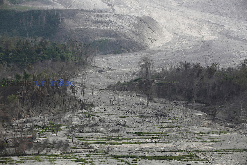 Damaged farmland and forest covered with deposits from pyroclastic flows from Sinabung Volcano, Indonesia