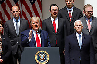 United States President Donald J. Trump delivers remarks before signing H.R. 7010 - PPP Flexibility Act of 2020 in the Rose Garden of the White House in Washington, DC on June 5, 2020.  Those pictured with the president include: US Secretary of Labor Eugene Scalia; US Secretary of the Treasury Steven T. Mnuchin; Kevin A. Hassett, Chairman, Council of Economic Advisers; and US Vice President Mike Pence.<br /> Credit: Yuri Gripas / Pool via CNP/AdMedia