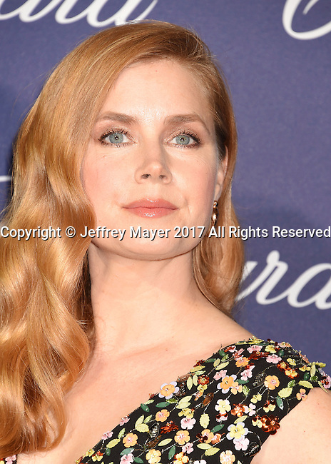 PALM SPRINGS, CA - JANUARY 02: Actress Amy Adams attends the 28th Annual Palm Springs International Film Festival Film Awards Gala at the Palm Springs Convention Center on January 2, 2017 in Palm Springs, California.