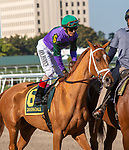 February 29, 2020: #6 Spice Is Nice, John Velazquez, The Davona Dale Stakes. Scenes from Fountain of Youth Stakes Day on February 29th, 2020 at Gulfstream Park in Hallandale Beach, Florida. LizLamont/Eclipse Sportswire/CSM
