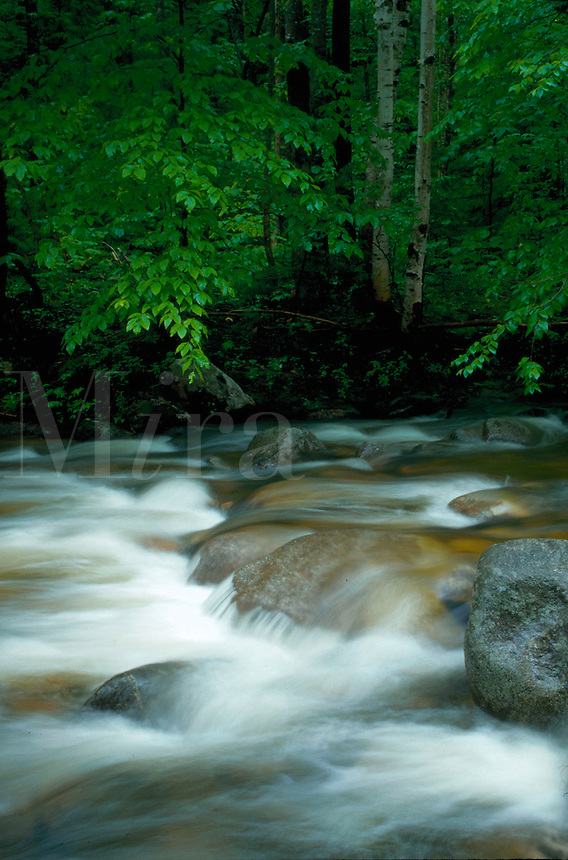 River cascades of white water over smooth rocks. Bear River, Maine