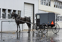 Amish horse and buggy, Lancaster County, Pennsylvania, USA