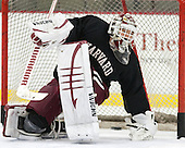 Steve Michalek (Harvard - 34) - The Harvard University Crimson practiced on Friday, October 22, 2013, at Bright-Landry Hockey Center in Cambridge, Massachusetts.