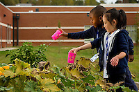 The Catawba River District has worked with a team of experts to create a transformational gardening and farming project involving six public schools including the  Whitewater Academy in Charlotte North Carolina.<br />