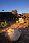 Boulders and full moon, Grand Staircase-Escalante National Monument, Utah