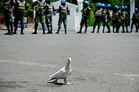 A white dove behind the UN policemen that guard the Presidential Palace in Port-au-Prince, Haiti. The United Nations Stabilization Mission In Haiti (MINUSTAH) is a peacekeeping mission that has been installed in Haiti in 2004 by the United Nations. In spite of the undoubted efforts that have been made by the UN, MINUSTAH soldiers became a symbol of the occupation and therefore they are generally not welcomed by the Haitian population.