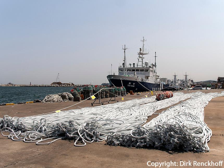 Im Hafen von Sokcho, Provinz Gangwon, S&uuml;dkorea, Asien<br /> Harbor of Sokcho, province Gangwon, South Korea, Asia