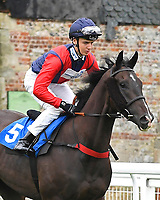 Tell William ridden by George Bass goes down to the start  of The Shadwell Racing Excellence Apprentice Handicap Div 1 during Horse Racing at Salisbury Racecourse on 14th August 2019