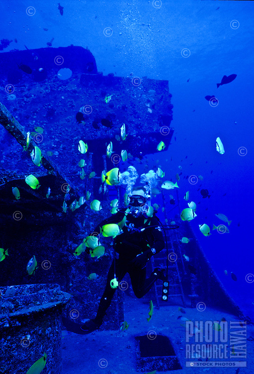 Scuba divers interact with Milletseed Butterflyfish and Blueline Snapper as they explore the sunken ship YO257 off the coast of Oahu near Waikiki.