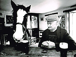 The horse that enjoed Guinness in Derrynane, County Kerry.<br />