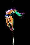 Lundi 14 Septembre 2009. Paris, France..Premiere competition Officielle de Pole Dance en France..20eme Theatre (Paris 20eme)..Marion Crampe