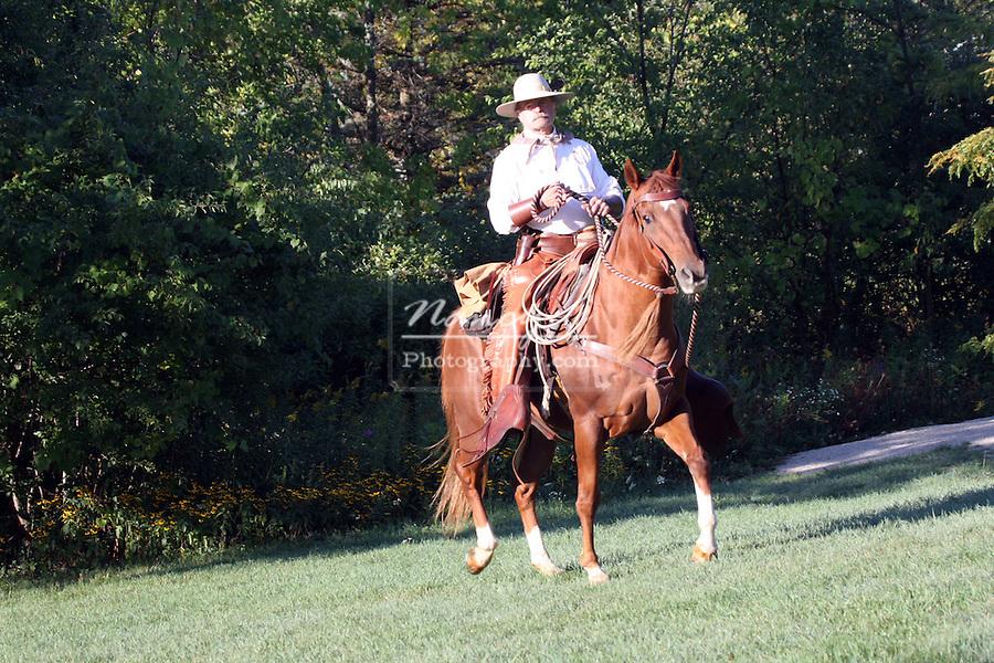 A cowboy riding western