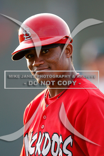 July 24, 2009:  Catcher Luis De La Cruz of the Batavia Muckdogs during a game at Dwyer Stadium in Batavia, NY.  The Muckdogs are the NY-Penn League Short-Season Class-A affiliate of the St. Louis Cardinals.  Photo By Mike Janes/Four Seam Images