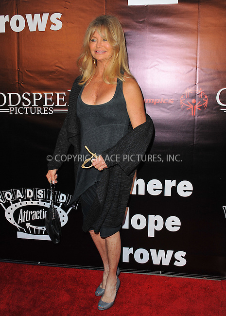 WWW.ACEPIXS.COM<br /> <br /> May 4 2015, LA<br /> <br /> Actress Goldie Hawn arriving at the Los Angeles premiere of 'Where Hope Grows' at the ArcLight Cinema on May 4, 2015 in Hollywood, California.<br /> <br /> By Line: Peter West/ACE Pictures<br /> <br /> <br /> ACE Pictures, Inc.<br /> tel: 646 769 0430<br /> Email: info@acepixs.com<br /> www.acepixs.com