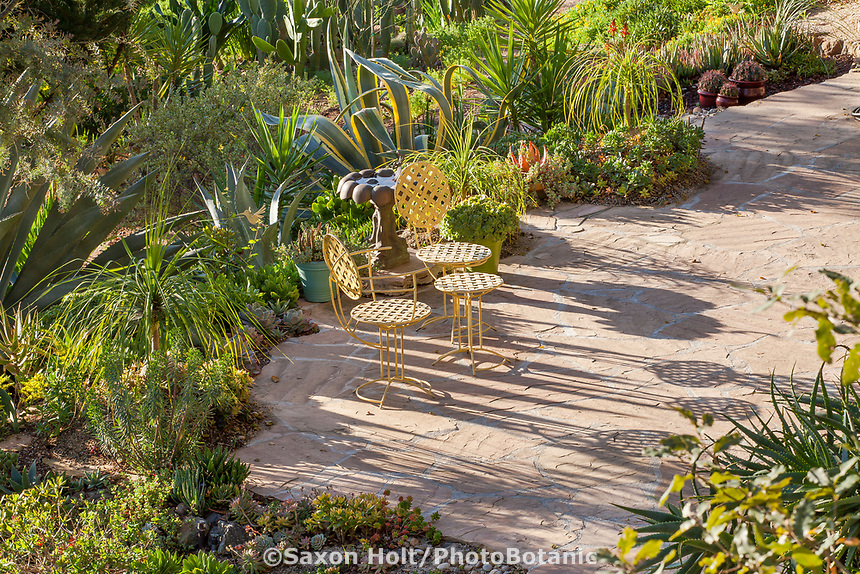 Morning light in Debra Lee Baldwin Southern California backyard succulent garden with patio