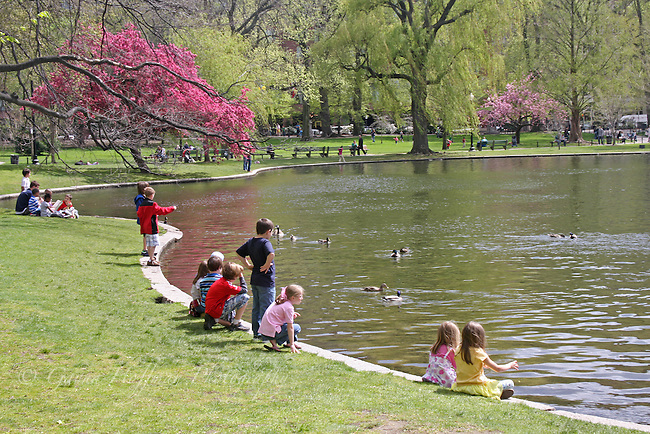 Children by the pond in the Boston Public Garden, MA, New England.