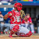 7 March 2016: Washington Nationals catcher Raudy Read in action during a Spring Training pre-season game against the Miami Marlins at Space Coast Stadium in Viera, Florida. The Nationals defeated the Marlins 7-4 in Grapefruit League play. Mandatory Credit: Ed Wolfstein Photo *** RAW (NEF) Image File Available ***