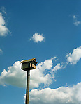 A wooden birdhouse on a tall pole against a cloudy blue sky.<br />