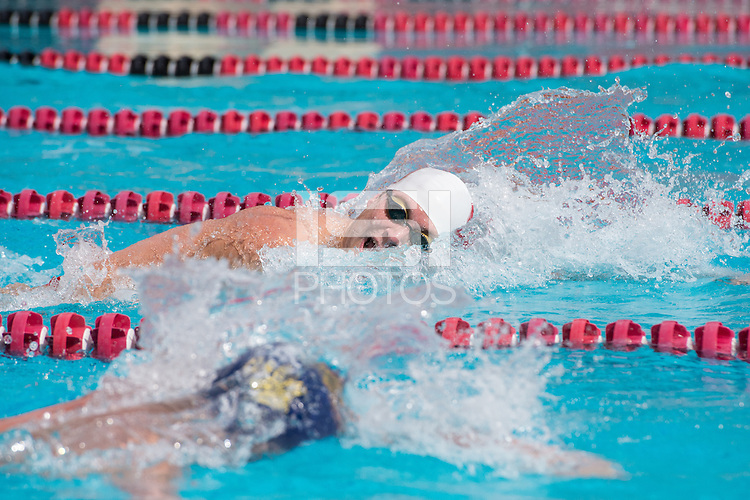 Stanford, CA, February 20, 2016<br /> Stanford Men's Swimming and Diving vs Cal. Stanford lost 130-113.