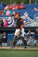 Batavia Muckdogs catcher Bryan De La Rosa (15) during a game against the West Virginia Black Bears on June 24, 2017 at Dwyer Stadium in Batavia, New York.  The game was suspended in the bottom of the third inning and completed on June 25th with West Virginia defeating Batavia 6-4.  (Mike Janes/Four Seam Images)