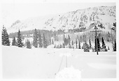 RGS tracks in snow.<br /> RGS  Trout Lake area ?, CO