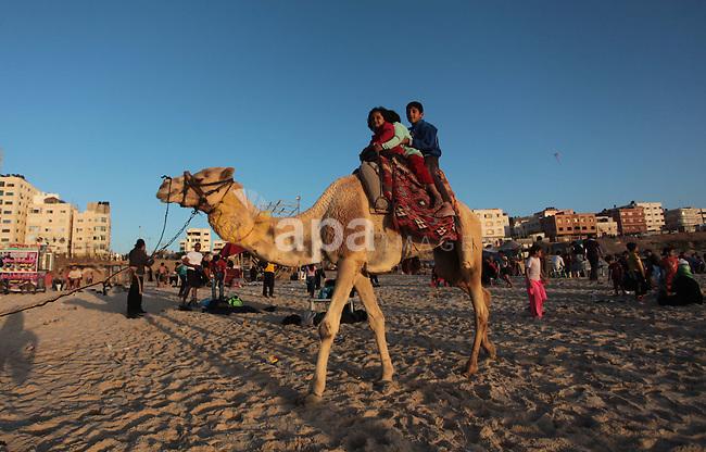 Palestinian children ride a camel on a beach in Gaza City May 2, 2014. Photo by Ashraf Amra