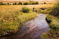 A fly fisherman targets brook trout on a spring creek near Dillon, Montana.