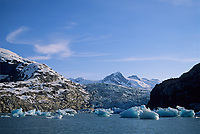 Floating glacier icebergs, calved off of Nellie Juan glacier, floating in Nellie Juan Lagoon, Prince William Sound, Alaska