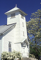 Locust Grove church in Ashland Missouri with Locust trees