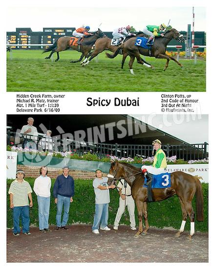 Spicy Dubai winning at Delaware Park on 6/16/09