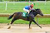 Dialin winning at Delaware Park on 6/17/17