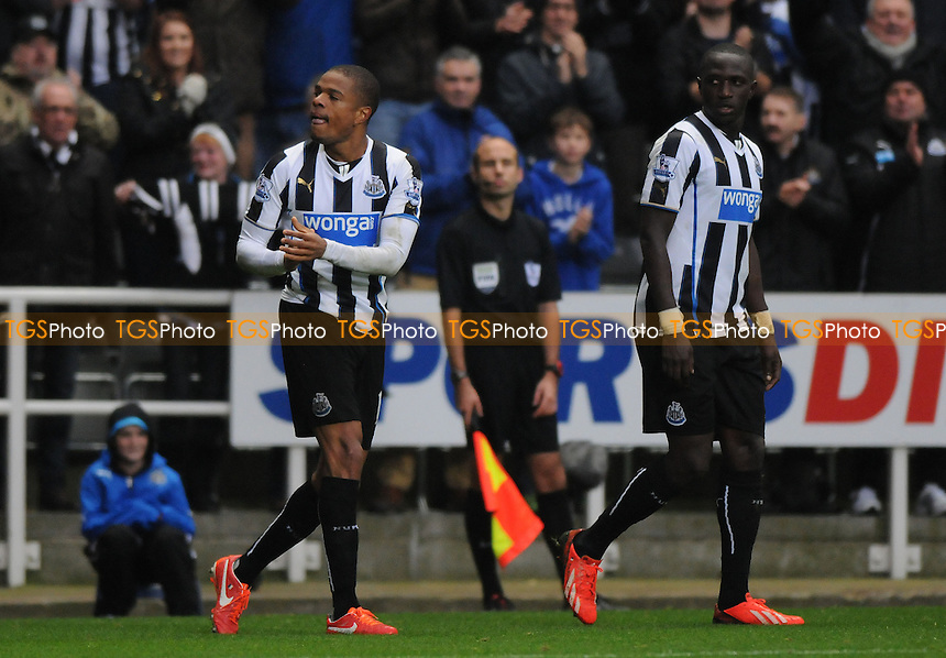 Loïc Rémy of Newcastle United celebrates scoring Newcastle United's second goal - Newcastle United vs Chelsea - Barclays Premier League Football at St James Park, Newcastle upon Tyne - 02/11/13 - MANDATORY CREDIT: Steven White/TGSPHOTO - Self billing applies where appropriate - 0845 094 6026 - contact@tgsphoto.co.uk - NO UNPAID USE