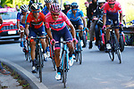 Maglia Rosa Richard Carapaz (ECU) Movistar Team and Vincenzo Nibali (ITA) Bahrain-Merida climb Monte Avena during Stage 20 of the 2019 Giro d'Italia, running 194km from Feltre to Croce d'Aune-Monte Avena, Italy. 1st June 2019<br /> Picture: POOL/Luca Bettini/BettiniPhoto | Cyclefile<br /> <br /> All photos usage must carry mandatory copyright credit (© Cyclefile | Luca Bettini/BettiniPhoto)