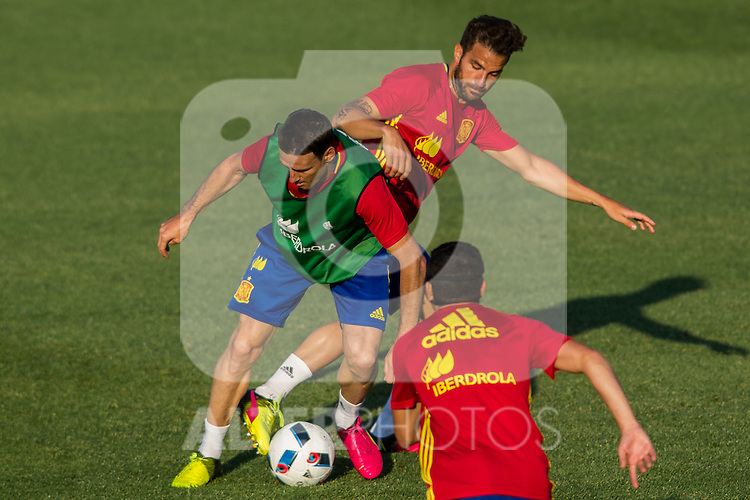 Spain's Aritz Aduriz and Cesc Fabregas  during the first training of the concentration of national soccer team before the Uefa Euro 2016.  Jun 4,2016. (ALTERPHOTOS/Rodrigo Jimenez)