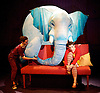 The Elephantom <br /> by Ross Collins<br /> adapted by Ben Power<br /> co-directed by Fin Calderwell &amp; Toby Olie<br /> consultant director Marianne Elliott <br /> <br /> at The Shed Theatre, NT, Southbank, London, Great Britain <br /> Press photocall<br /> 12th December 2013 <br /> <br /> Audrey Brisson as Girl <br /> Laura Cubitt - Mum <br /> Tim Lewis - Dad <br /> Julia Innocenti - Grandma<br /> Avye Leventis - Teacher<br /> David Emmings - Mr Spectral<br /> <br /> <br /> Photograph by Elliott Franks