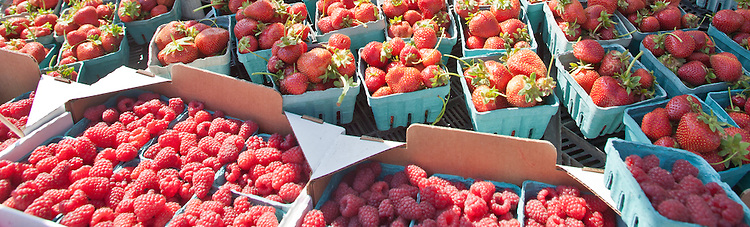Port Townsend Farmers Market, berries, Washington State, Pacific Northwest, USA,
