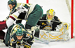 12 November 2010: University of Vermont Catamount goaltender Rob Madore, a Junior from Pittsburgh, PA, in action during the second period against the Boston College Eagles at Gutterson Fieldhouse in Burlington, Vermont. The Eagles edged out the Cats 3-2 in the first game of their weekend series. Mandatory Credit: Ed Wolfstein Photo