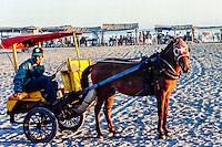 Java, Yogyakarta. A horse taxi on a beach south of Yogyakarta.