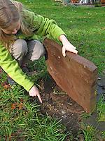 Mädchen, Kind hebt Stein hoch, Leben unter Steinen, hier u.a. ein verlassenes Mäusenest und Kirschkernreste als Spuren der Nahrungssuche einer Maus